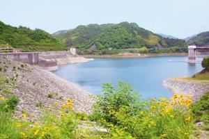 米泉湖公園・さくらの丘