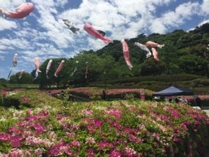永源山公園展望台