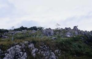 秋吉台カルスト展望台