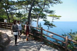 青海岛自然研究路