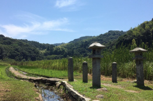 Clusters of Common Cattails and the Approach to the Itsukushima Shrine