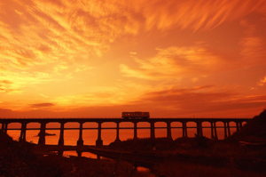 惣乡川桥梁风景
