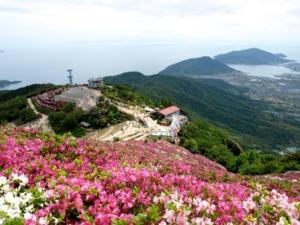 大平山山頂公園