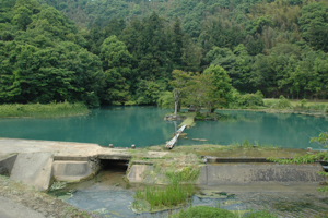 시라미즈노 연못
