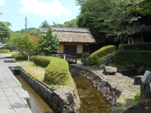 Seiryu-dori Promenade
